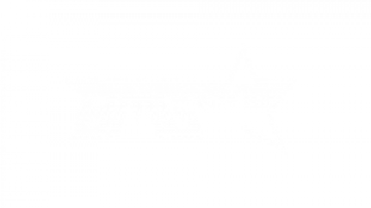 BMG MOVIES